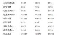 财务报表分析案例分析(2)